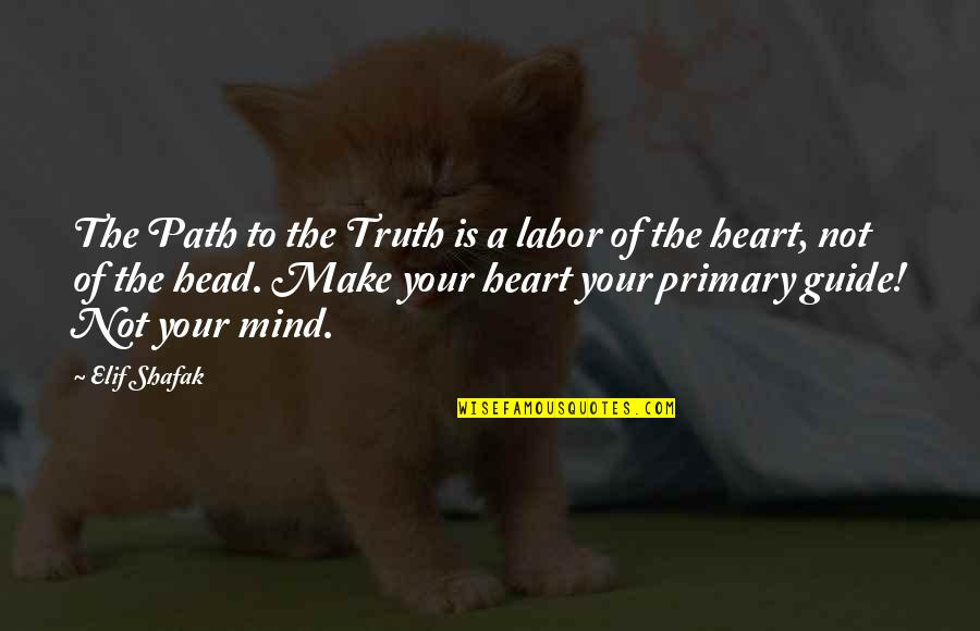 Krav Maga Fighter Quotes By Elif Shafak: The Path to the Truth is a labor