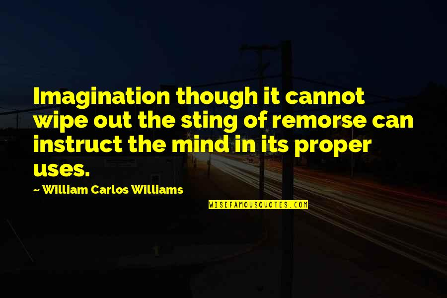 Kristoff Krane Quotes By William Carlos Williams: Imagination though it cannot wipe out the sting