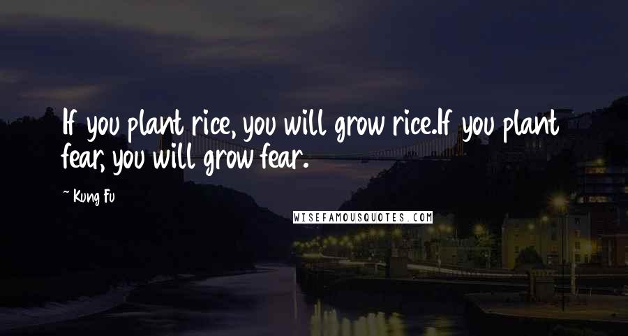 Kung Fu quotes: If you plant rice, you will grow rice.If you plant fear, you will grow fear.
