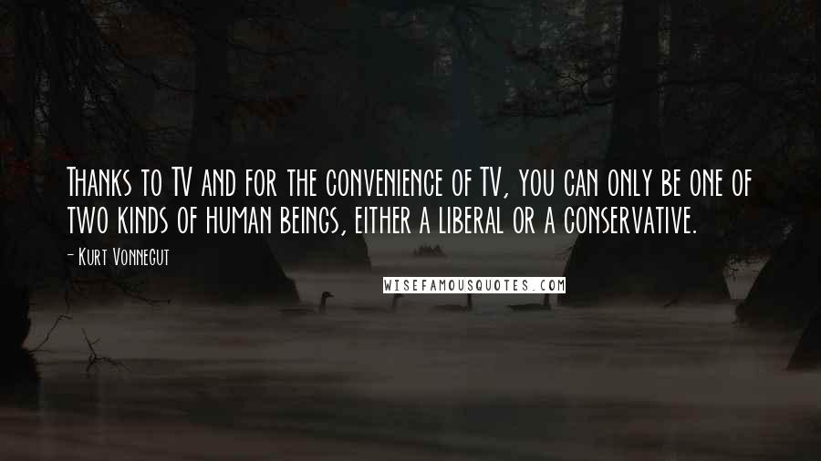 Kurt Vonnegut quotes: Thanks to TV and for the convenience of TV, you can only be one of two kinds of human beings, either a liberal or a conservative.