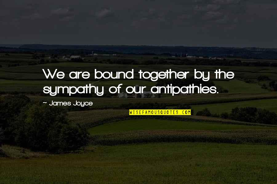 Kylie And Kendall Quotes By James Joyce: We are bound together by the sympathy of