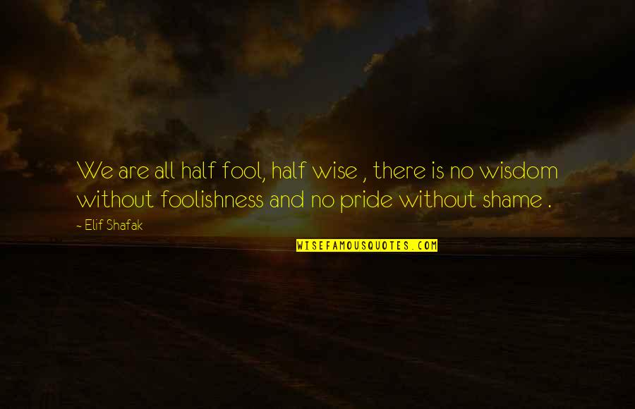 Kyss Mig Quotes By Elif Shafak: We are all half fool, half wise ,
