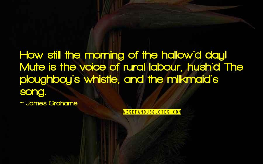 Labour'd Quotes By James Grahame: How still the morning of the hallow'd day!