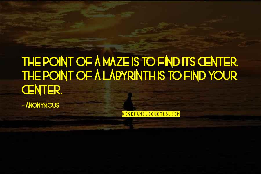 Labyrinth Maze Quotes By Anonymous: The point of a maze is to find