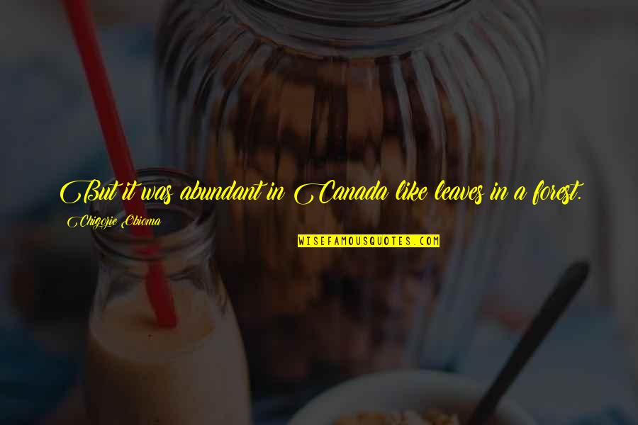 Lac Quotes By Chigozie Obioma: But it was abundant in Canada like leaves