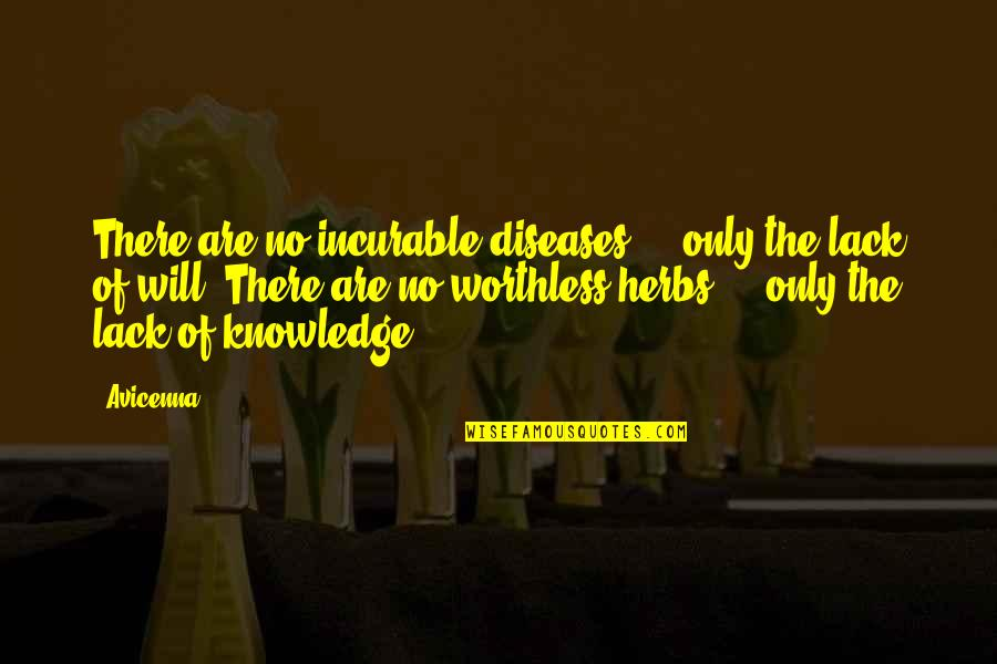 Lack Of Knowledge Quotes By Avicenna: There are no incurable diseases - only the