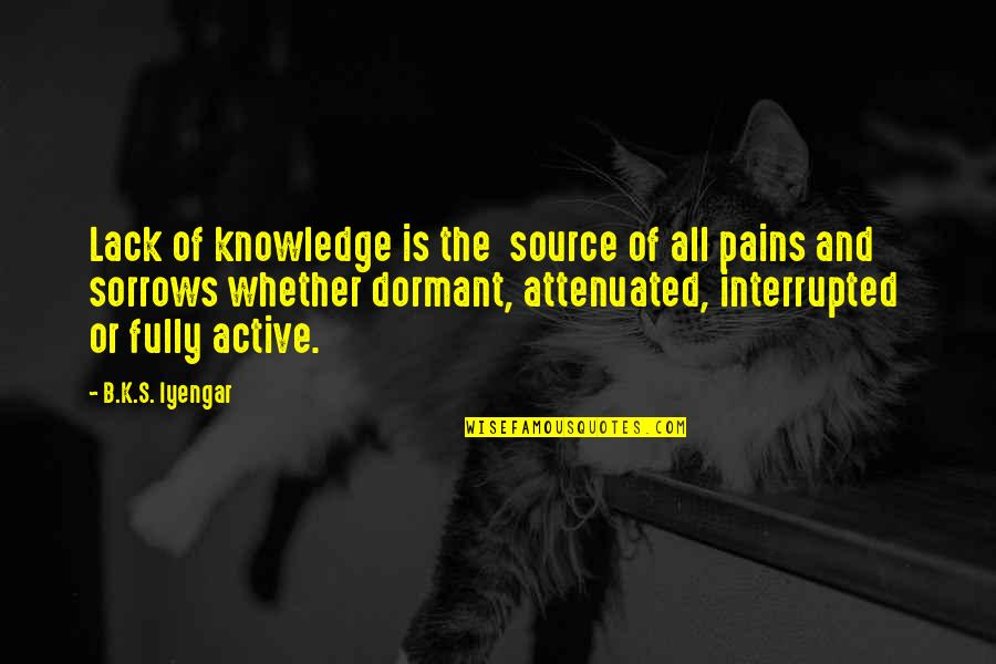 Lack Of Knowledge Quotes By B.K.S. Iyengar: Lack of knowledge is the source of all