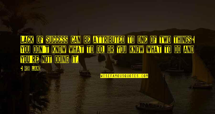 Lack Of Knowledge Quotes By Rob Liano: Lack of success can be attributed to one