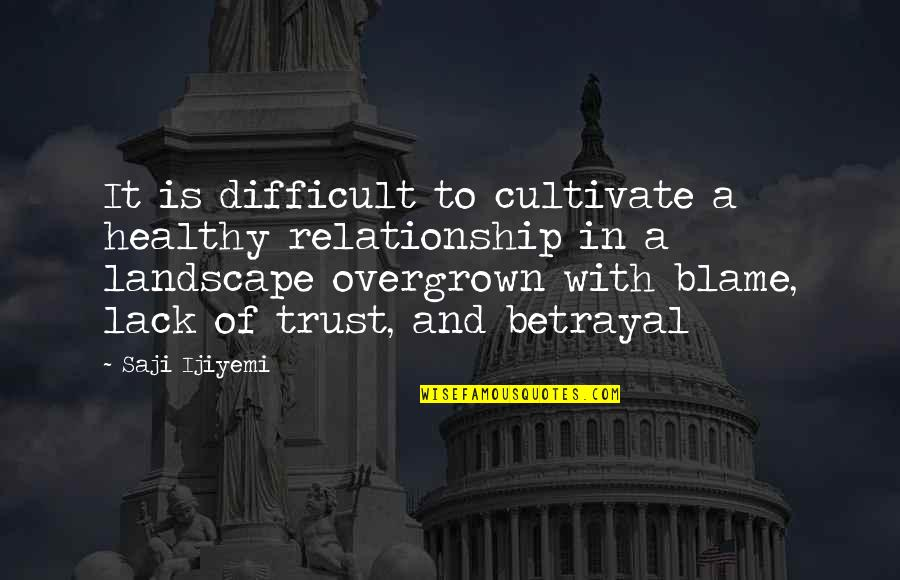 Lack Of Trust Quotes By Saji Ijiyemi: It is difficult to cultivate a healthy relationship