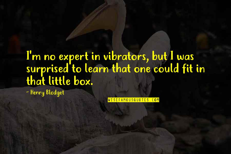 Lady Hunstanton Quotes By Henry Blodget: I'm no expert in vibrators, but I was
