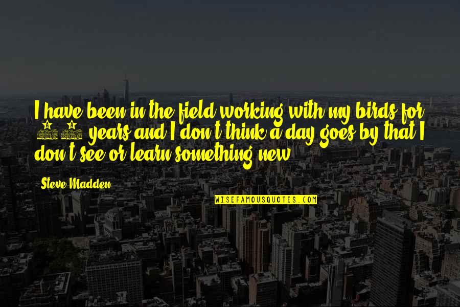 Ladybug Wall Quotes By Steve Madden: I have been in the field working with