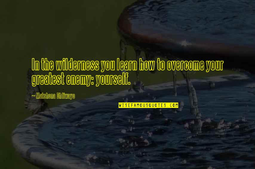 Lailatul Qadr 2013 Quotes By Matshona Dhliwayo: In the wilderness you learn how to overcome