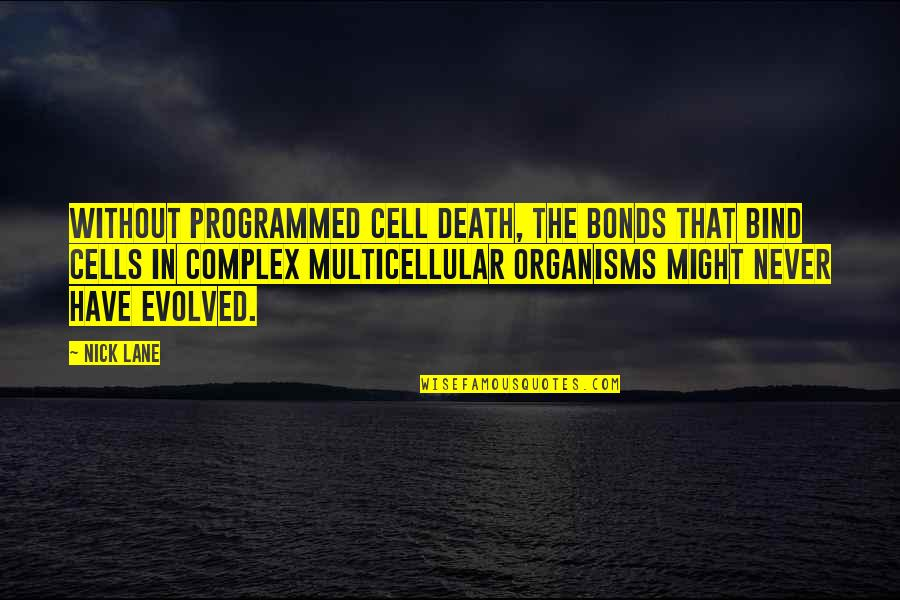 Lane Quotes By Nick Lane: Without programmed cell death, the bonds that bind