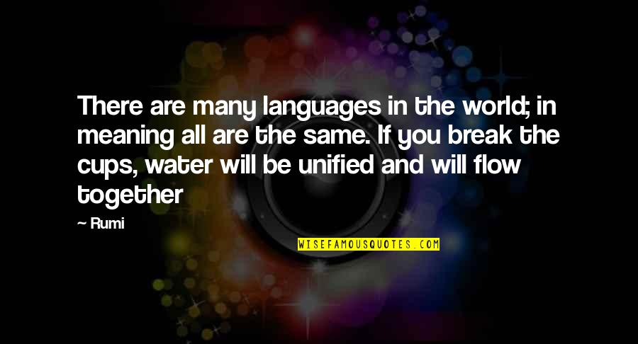 Languages Of The World Quotes By Rumi: There are many languages in the world; in