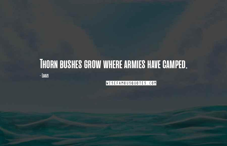 Laozi quotes: Thorn bushes grow where armies have camped.