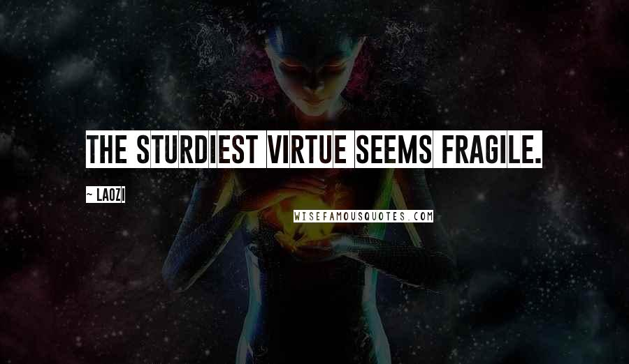 Laozi quotes: The sturdiest virtue seems fragile.
