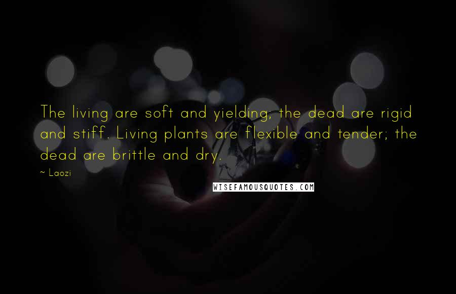 Laozi quotes: The living are soft and yielding; the dead are rigid and stiff. Living plants are flexible and tender; the dead are brittle and dry.