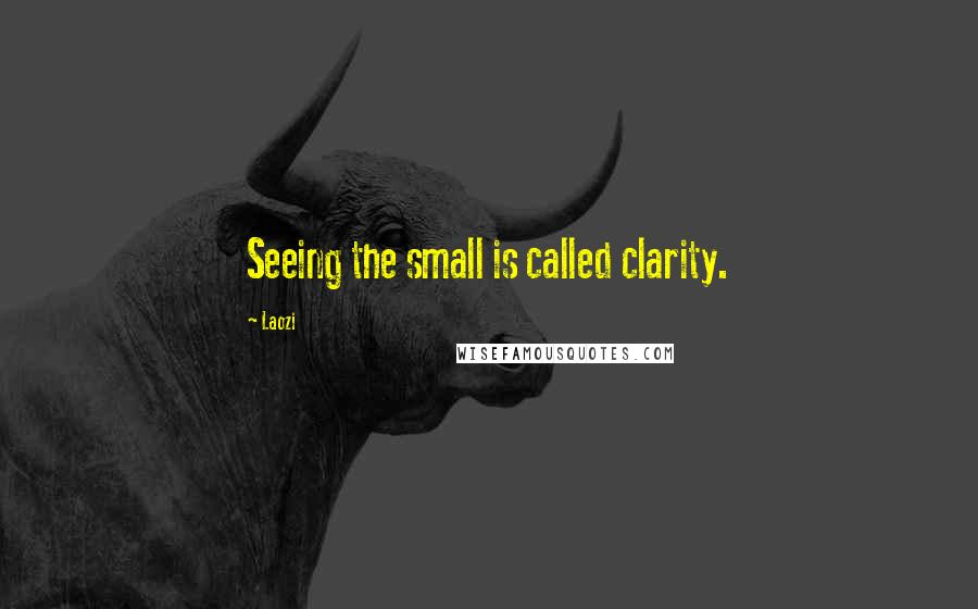 Laozi quotes: Seeing the small is called clarity.