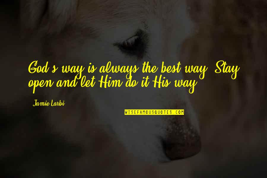 Larbi Quotes By Jamie Larbi: God's way is always the best way. Stay