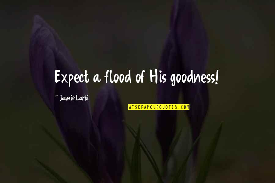 Larbi Quotes By Jamie Larbi: Expect a flood of His goodness!
