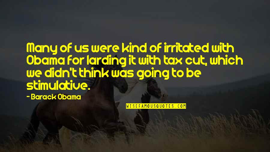 Larding Quotes By Barack Obama: Many of us were kind of irritated with