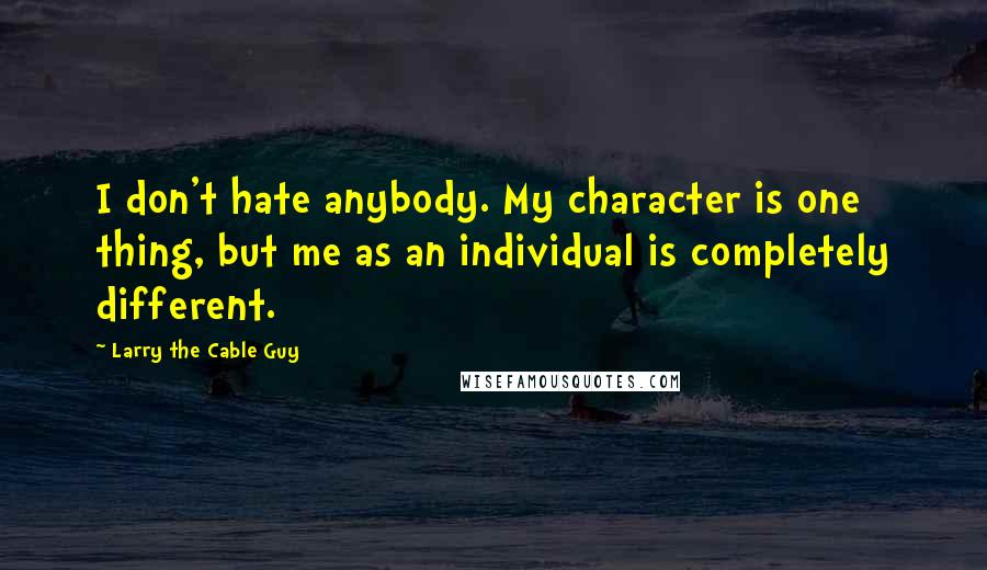 Larry The Cable Guy quotes: I don't hate anybody. My character is one thing, but me as an individual is completely different.