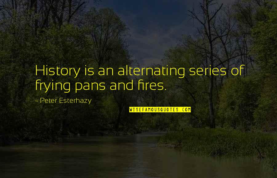 Last Tango In Halifax Quotes By Peter Esterhazy: History is an alternating series of frying pans