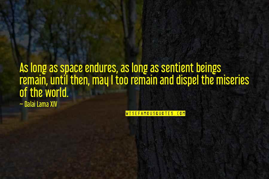 Late Night Rendezvous Quotes By Dalai Lama XIV: As long as space endures, as long as