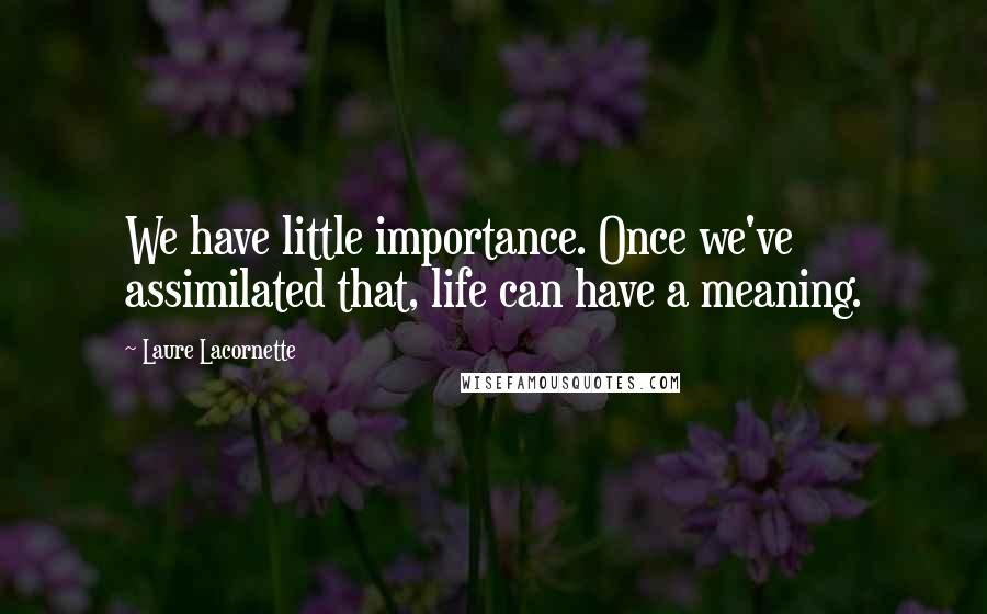 Laure Lacornette quotes: We have little importance. Once we've assimilated that, life can have a meaning.