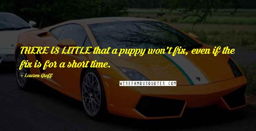 Lauren Groff quotes: THERE IS LITTLE that a puppy won't fix, even if the fix is for a short time.