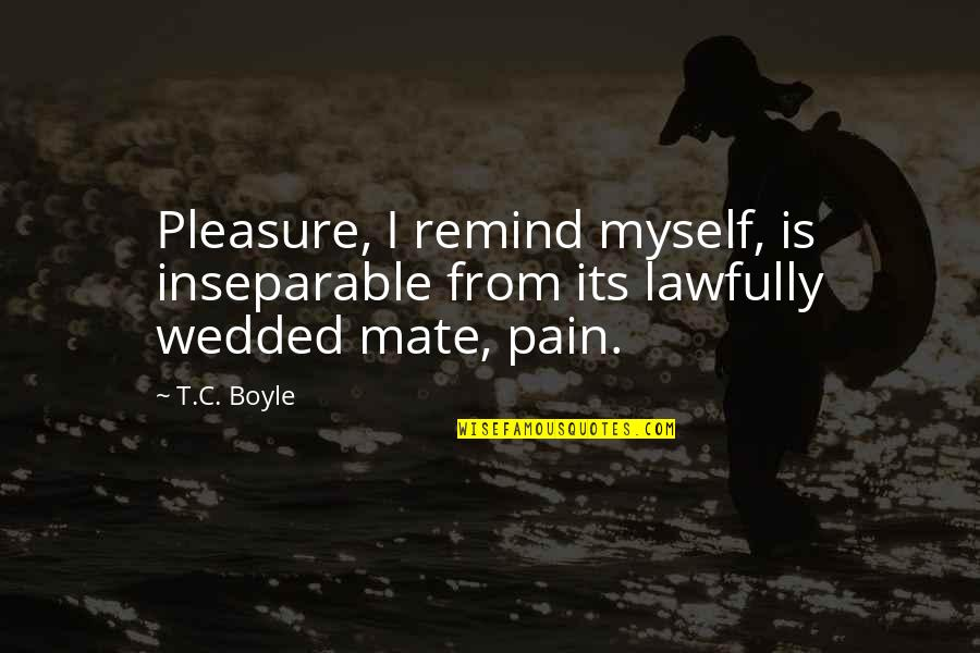 Lawfully Quotes By T.C. Boyle: Pleasure, I remind myself, is inseparable from its
