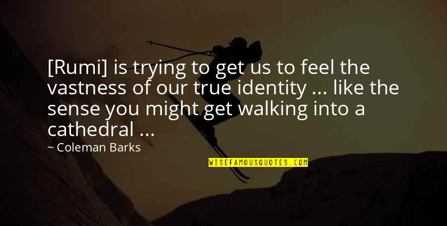 Lawrence Lefferts Quotes By Coleman Barks: [Rumi] is trying to get us to feel