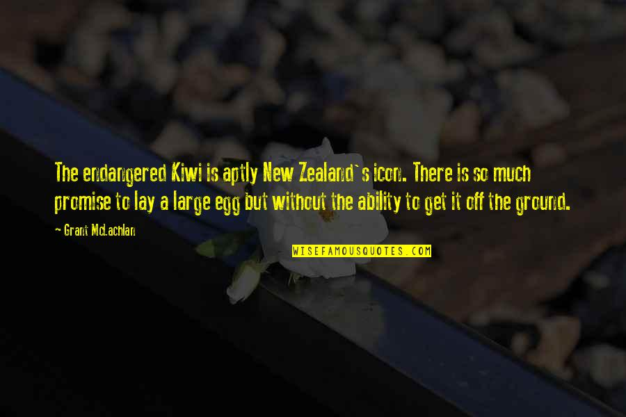 Lay Off Quotes By Grant McLachlan: The endangered Kiwi is aptly New Zealand's icon.