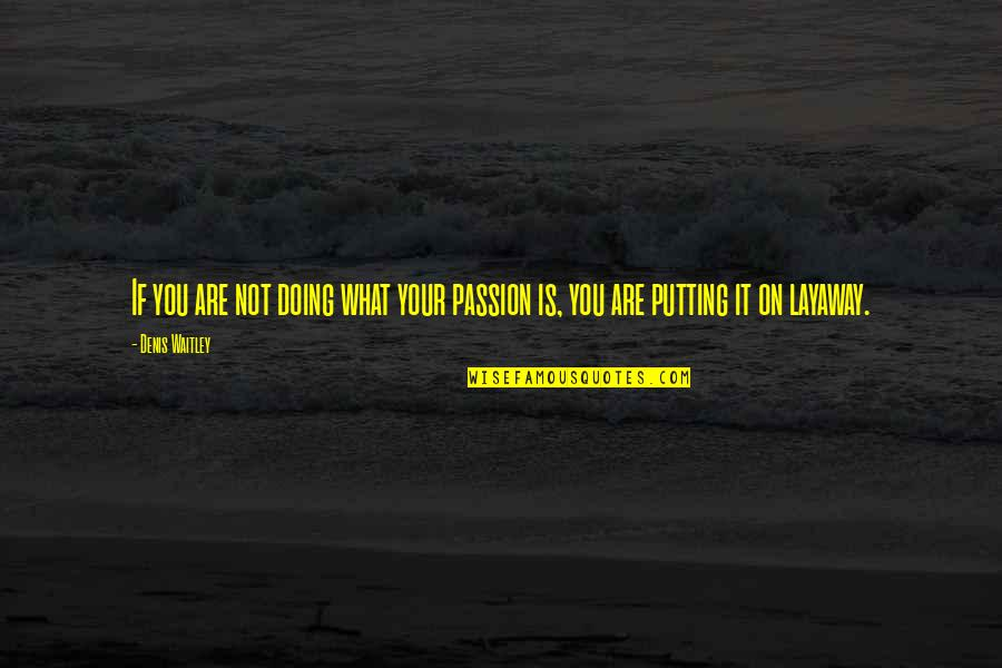 Layaway Quotes By Denis Waitley: If you are not doing what your passion