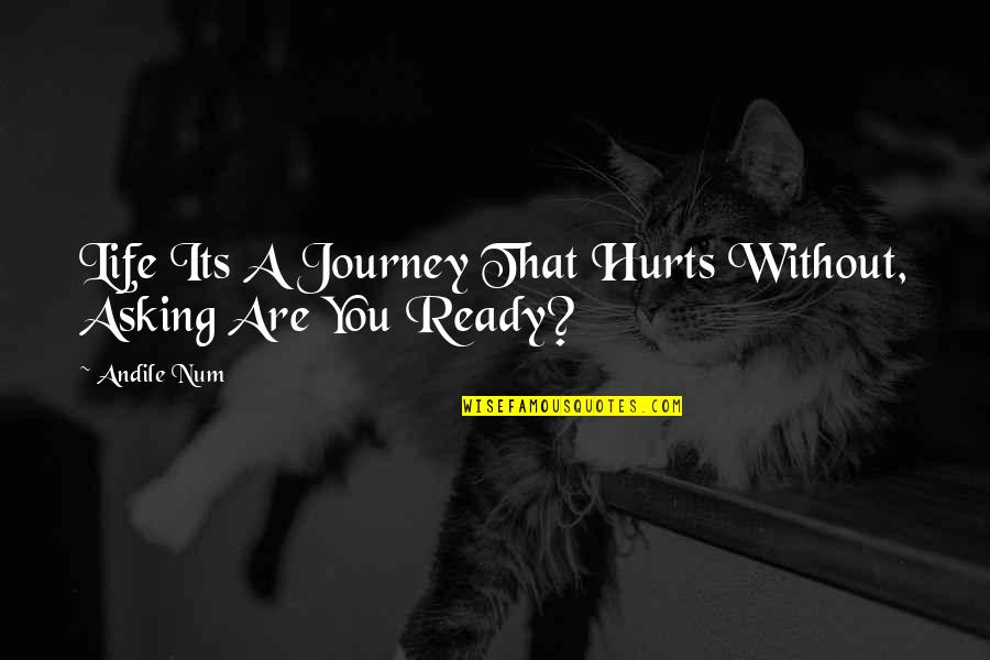 Layd Quotes By Andile Num: Life Its A Journey That Hurts Without, Asking