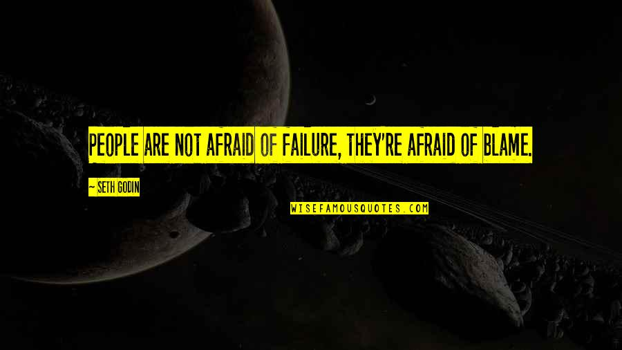 Leadership And Failure Quotes By Seth Godin: People are not afraid of failure, they're afraid