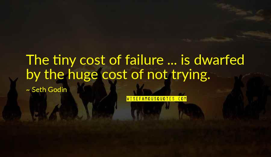Leadership And Failure Quotes By Seth Godin: The tiny cost of failure ... is dwarfed