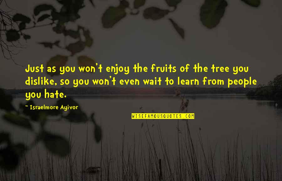 Learn Not To Hate Quotes By Israelmore Ayivor: Just as you won't enjoy the fruits of