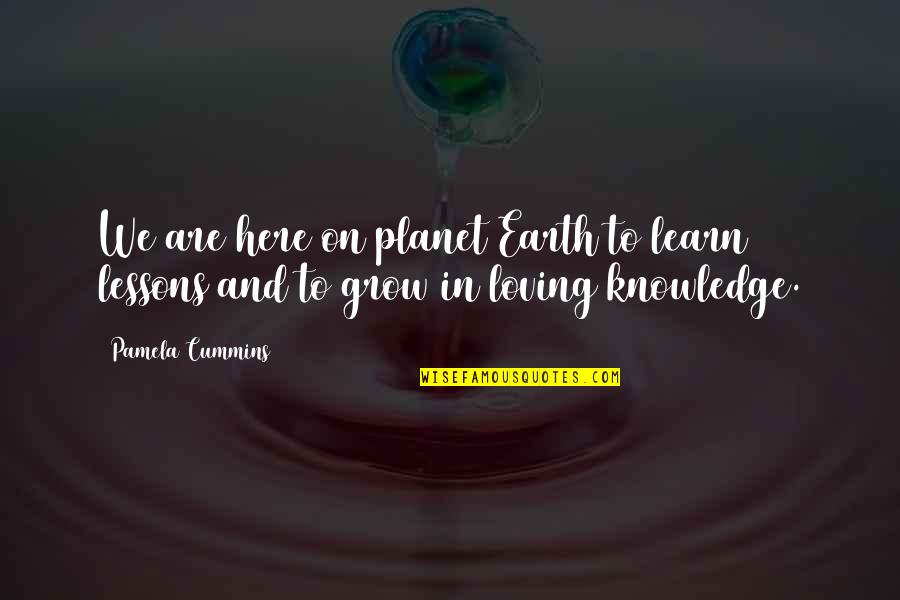 Learned Lessons Quotes By Pamela Cummins: We are here on planet Earth to learn