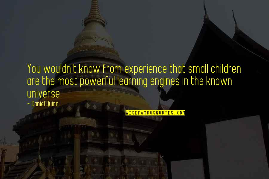 Learning From Experience Quotes By Daniel Quinn: You wouldn't know from experience that small children