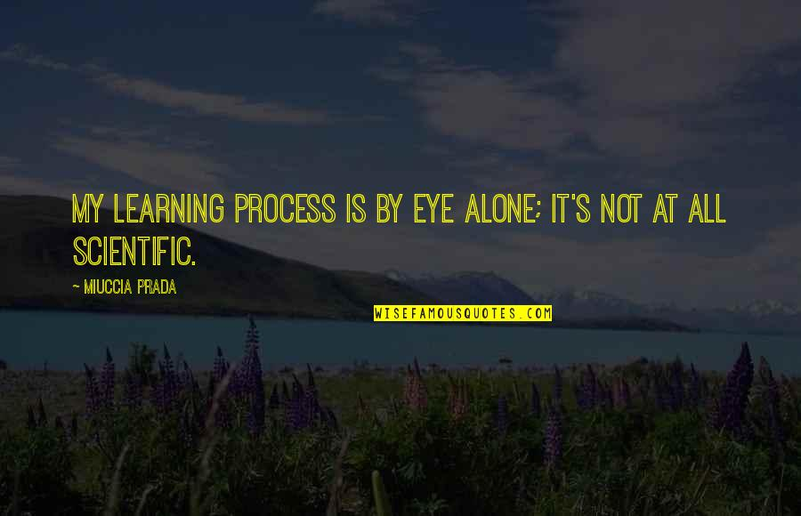 Learning Is Not Quotes By Miuccia Prada: My learning process is by eye alone; it's