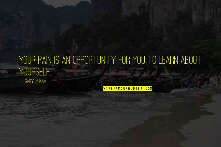 Learning More About Yourself Quotes By Gary Zukav: Your pain is an opportunity for you to
