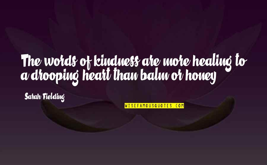 Leather Boots Quotes By Sarah Fielding: The words of kindness are more healing to