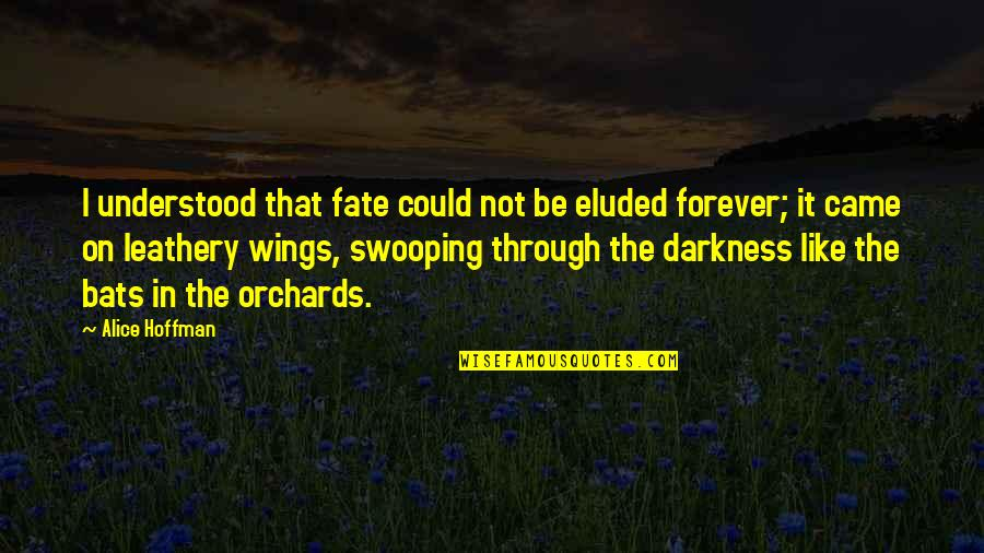 Leathery Quotes By Alice Hoffman: I understood that fate could not be eluded