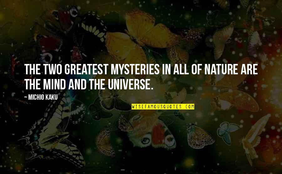 Lee Jordan Quidditch Quotes By Michio Kaku: The two greatest mysteries in all of nature