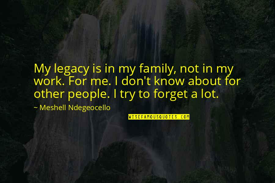 Legacy And Family Quotes By Meshell Ndegeocello: My legacy is in my family, not in