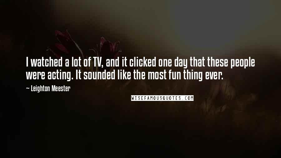 Leighton Meester quotes: I watched a lot of TV, and it clicked one day that these people were acting. It sounded like the most fun thing ever.