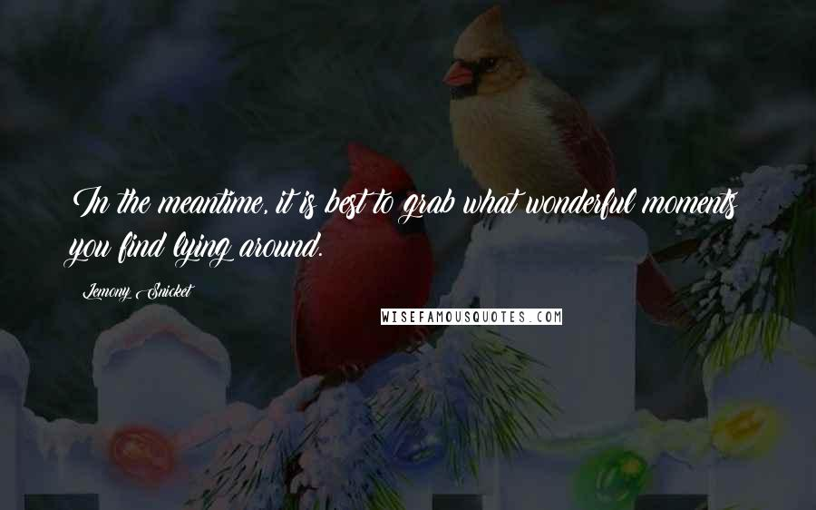 Lemony Snicket quotes: In the meantime, it is best to grab what wonderful moments you find lying around.