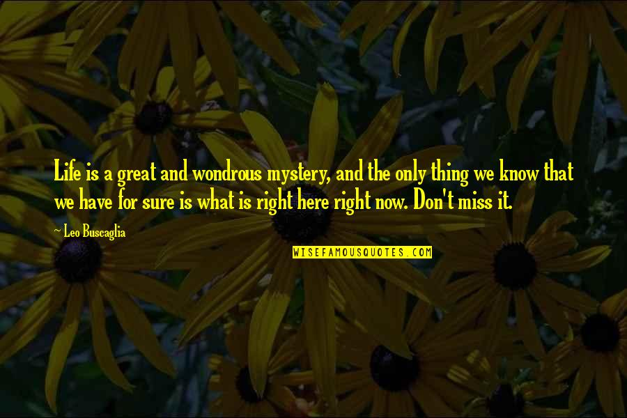 Leo Buscaglia Quotes By Leo Buscaglia: Life is a great and wondrous mystery, and