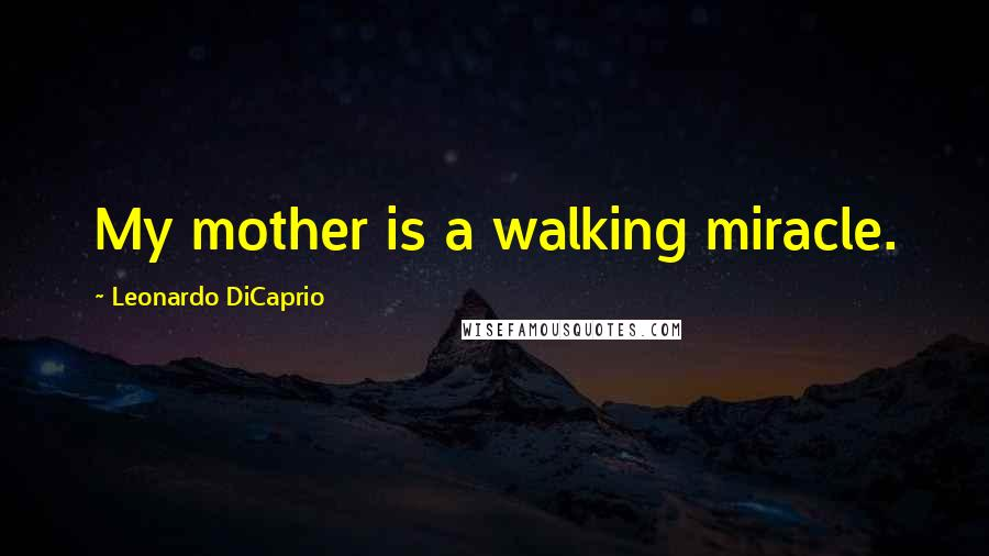 Leonardo DiCaprio quotes: My mother is a walking miracle.